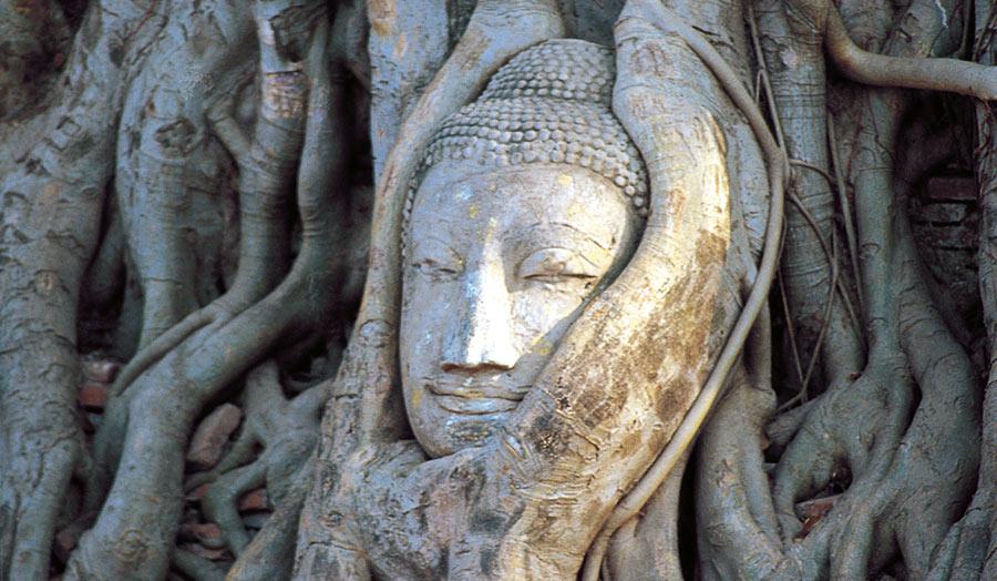 "Bangkok, Rundreise ""Nordthailand Classic"" & Baden auf Phuket"
