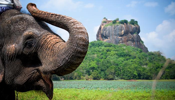 Sri Lanka: Grand Lanka 12D / 11N