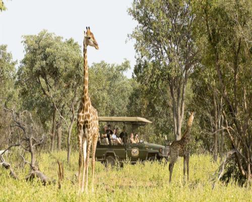 OFERTA: Sudáfrica en Reserva Privada de Lujo- ÚLTIMAS PLAZAS