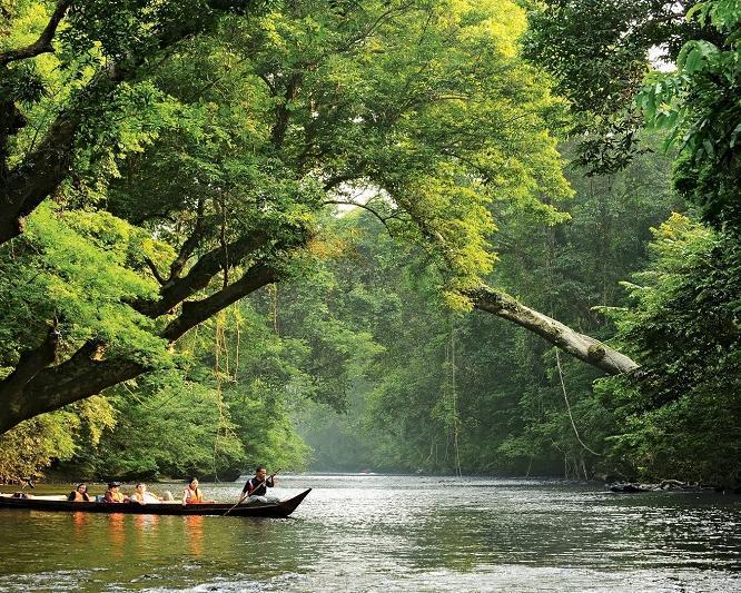 "Rundreise ""3 Tage Abenteuer Taman Negara"""