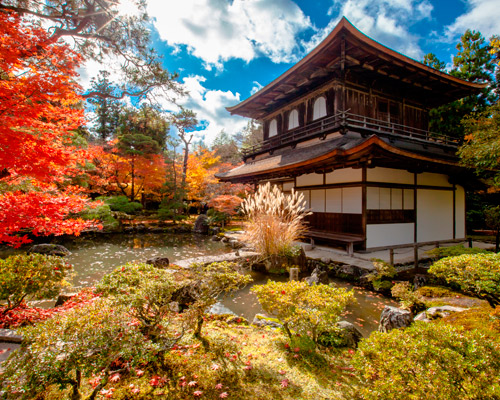 OSAKA, NARA Y KIOTO: Cultura y naturaleza