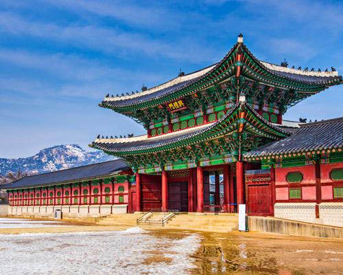Experience Seoul & Osaka