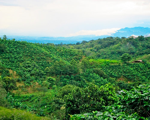 Vuelo + Hotel a Costa Rica