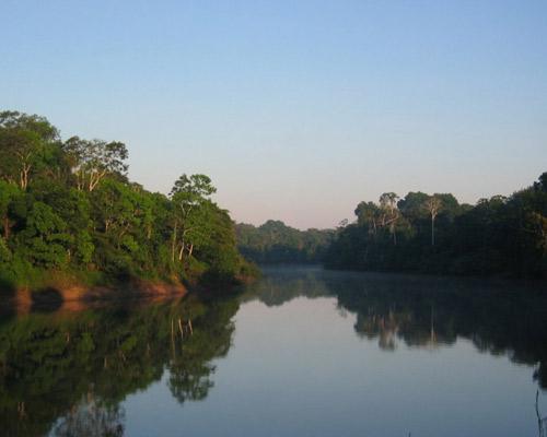 Dschungeltour Iquitos