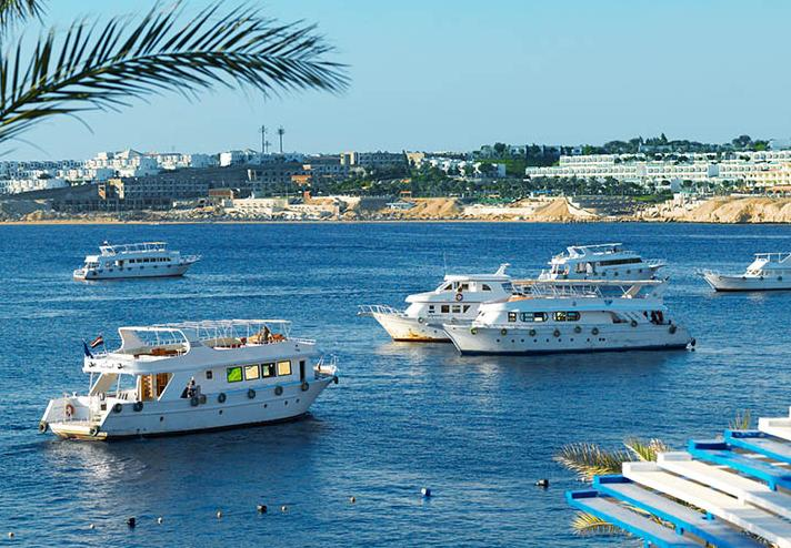 4 Days. Sharm El Sheikh 5*