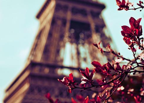 4 Days. Paris 4* - Option 1