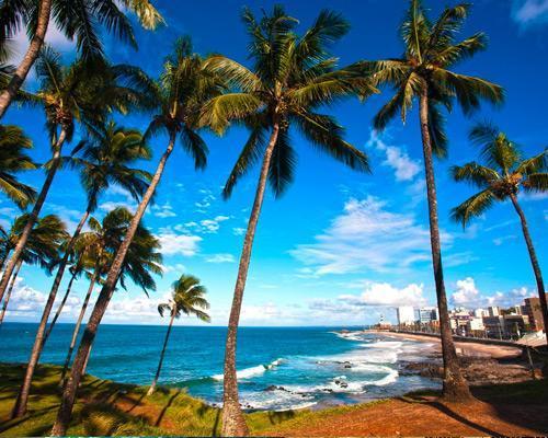 Salvador de Bahía ¡con vuelos directos!