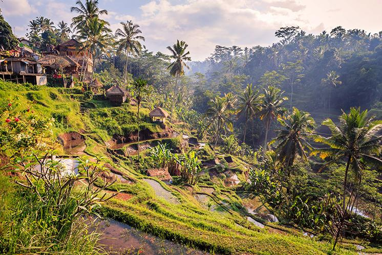 7 Days. Bali 5* - Option 1