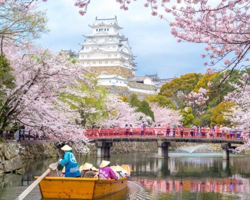 Cseresznyevirágzás Tokióban: hotel és repjegy Budapestről