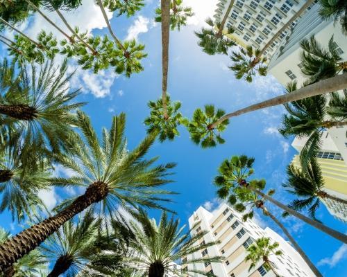 Miami Beach, Florida repülőjeggyel, hotellel
